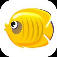 蝴蝶鱼快讯赚钱app