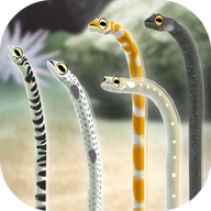 养育花园鳗的治愈游戏破解版
