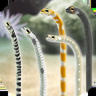 养育花园鳗的治愈游戏安卓版