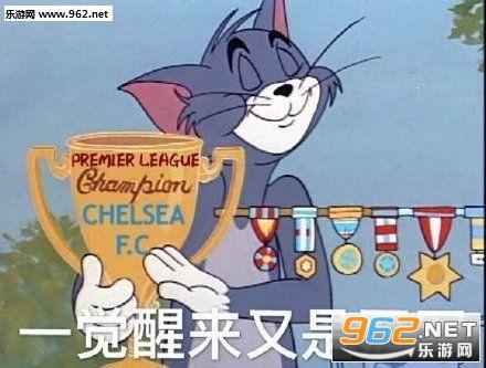 汤姆猫2020单身冠军图片