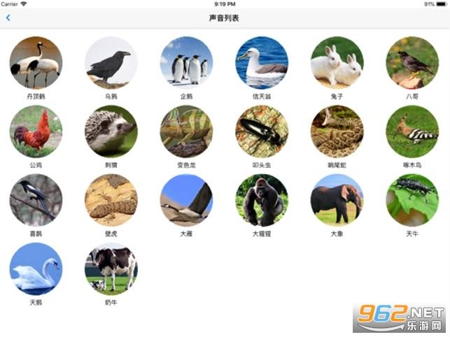 动物声音王国appv1.0 游戏截图3